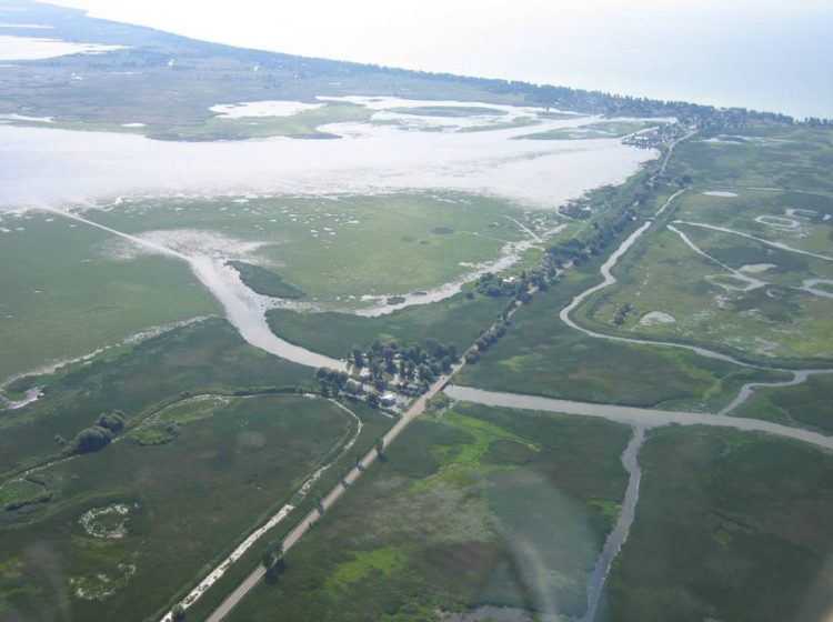 aerial view of Causeway 1
