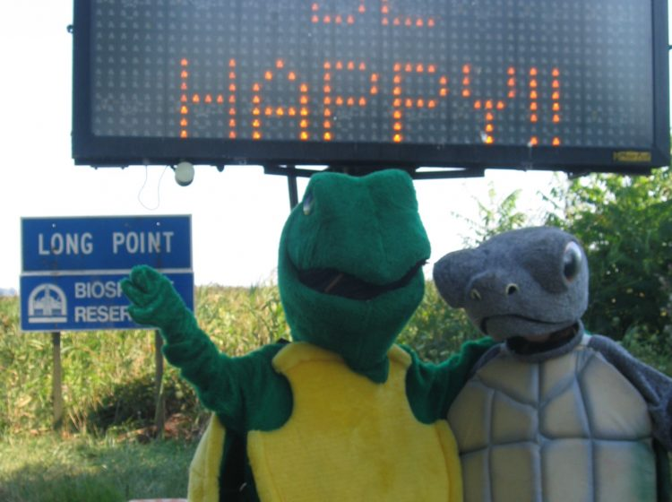 turtles at sign